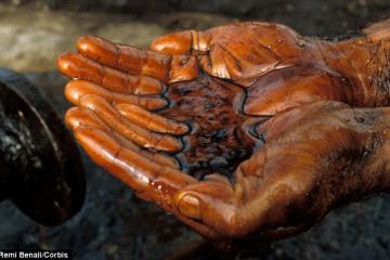 Đào tạo kiến thức và tập huấn kỹ năng ứng phó sự cố tràn dầu