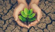 Bảo vệ môi trường đất