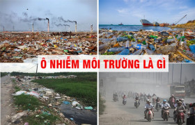 """Ô nhiễm môi trường vẫn phức tạp, """"gánh nặng"""" dồn sang năm 2021"""