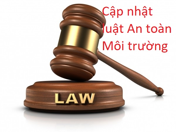 Luật HSE